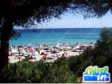 Spiagge e Itinerari - Spiaggia Le Bombarde - Alghero