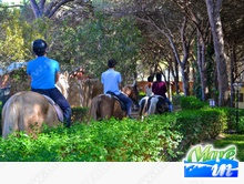 Sardegna - Arborea - Horse Country Resort