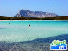 Appartamenti Budoni Sardegna